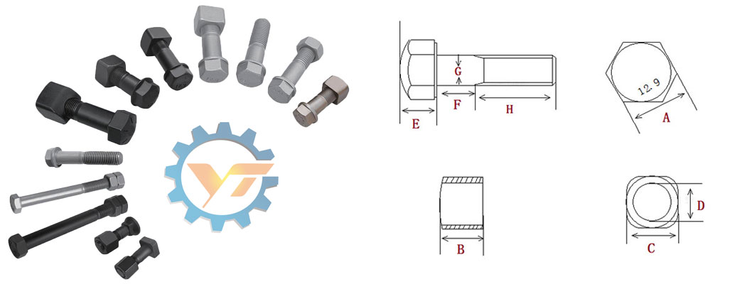 Bolt and nut structure
